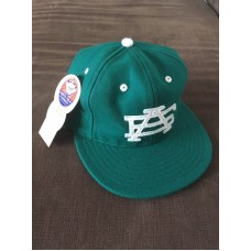 Ebbets Field Adjustable Strap Hat  New with tags  Rare OOS Cap Green AE Vintage  eb-19837473